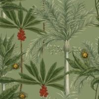 Premium wallpaper Madagascar