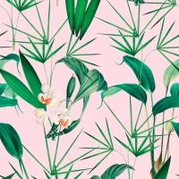 Premium wallpaper Palm Springs pink