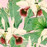 Premium wallpaper Tropical island pink