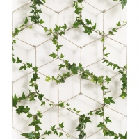 Ivy on ropes wallpaper
