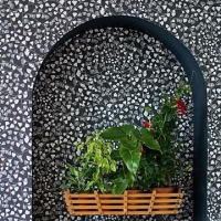 Miss Print wallpaper Fern black