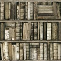 Antique bookshelve wallpaper