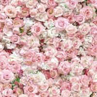 Rose wall wallpaper