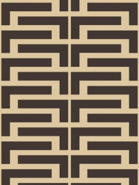 dark brown lines on a brown background