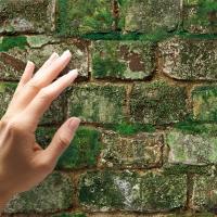 Old mossy white bricks wallpaper