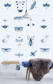 Entomology wallpaper blue