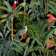 Premium wallpaper Parrots of Brasil Anthraciet