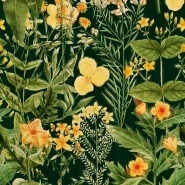 Premium wallpaper Mimulus anthracite