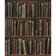 Oxford bookshelve wallpaper