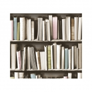 vintage bookshelve wallpaper